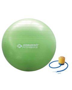 Donic-Schildkroet Gymnastikball 65cm, (Green)